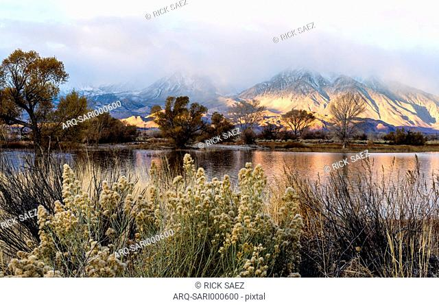Scenic View Of Farmers Pond During Sunrise In Sierra Nevada