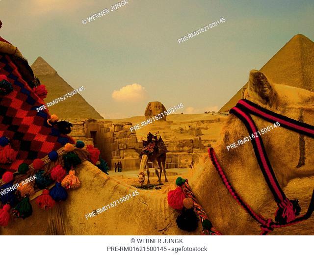 Giza, Egyp / Gizeh, Ägypten