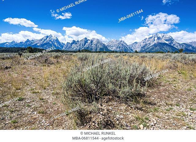 The Teton range in the Grand Teton National Park, Wyoming, USA