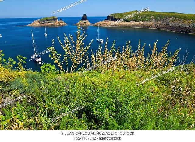 Illa Grossa, Columbretes Islands, Castellon province, Comunidad Valenciana, Spain