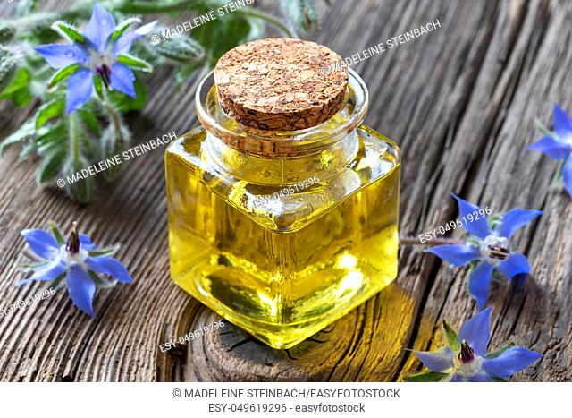 A bottle of borage oil with fresh blooming plant