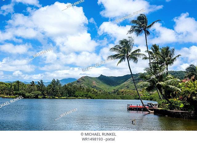 Wailua River. Kauai, Hawaii, United States of America, Pacific