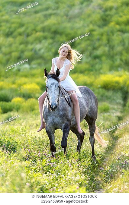 Girl riding a grey horse
