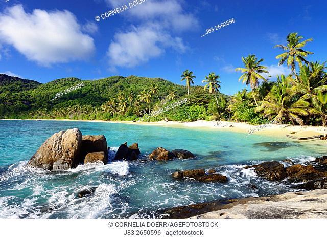 Beach Anse Forbans, Mahe Island, Seychelles, Indian Ocean, Africa