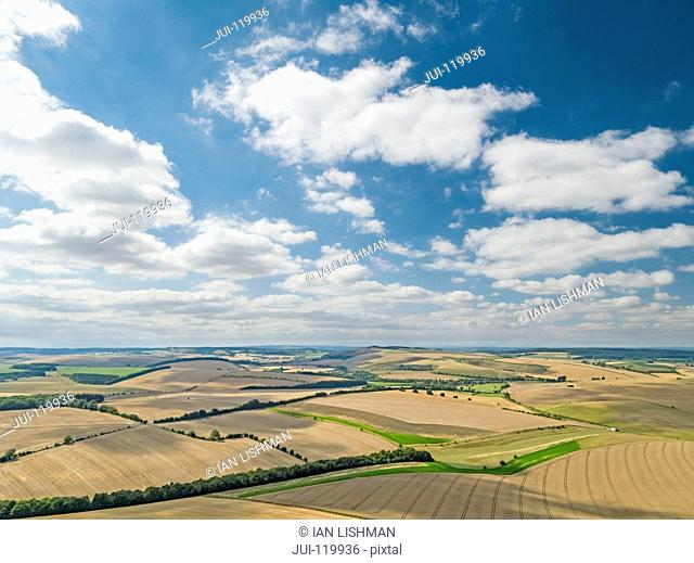 Aerial landscape of summer wheat and barley field crops for harvest and blue sky with fluffy white clouds on farm