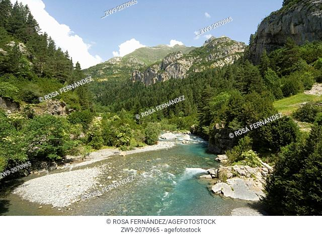 Ara river and Bujaruelo valley, Ordesa and Monte Perdido National Park, Pyrenees Range, province of Huesca, Aragon, Spain