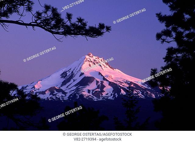 Mt Jefferson from Green Ridge, Deschutes National Forest, Oregon