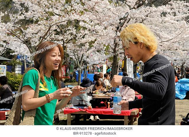 Young couple with blond coloured hair celebrating the Cherry Blossom Festival in Maruyama Park, Kyoto, Japan, Asia