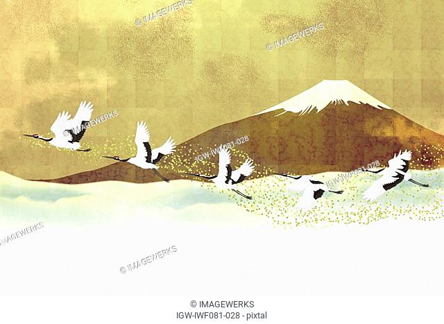 Red-crowned Cranes in flight against Mt. Fuji