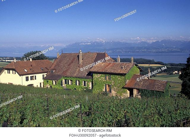 Switzerland, La Cote, Vaud, Lake Geneva, Scenic view of the village of Bougy-Villars and the countryside covered with vineyards along Lac Leman in the Canton of...