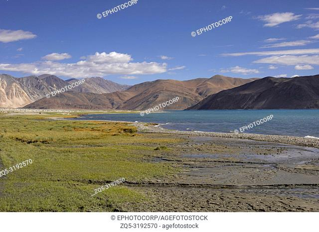 Pangong Lake, Jammu and Kashmir, India. Pangong Tso or high grassland lake extends from India to China