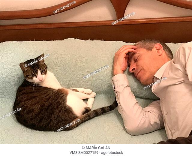 Man resting in bed with a cat