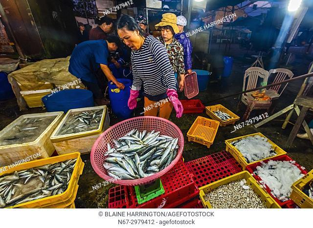 Fish market at sunrise, Cam Ha; Hoi An, Vietnam