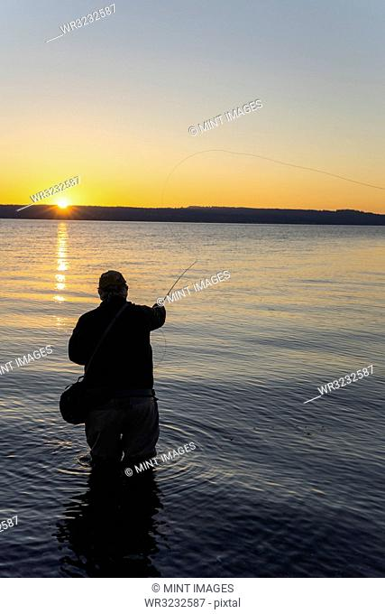 A silhouette view of a fly fisherman casting for salmon and searun coastal cutthroat trout from a salt water beach on the west coast of the USA