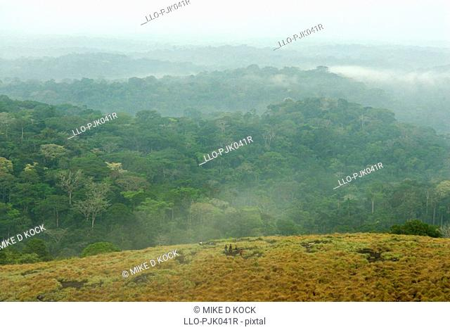 Inselbergs are surrounded by closed canopy forest as far as the eye can see. Minkebe, Gabon, Africa