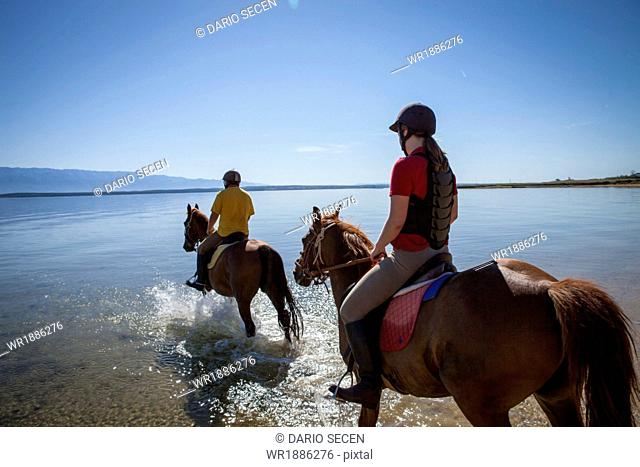 Horse Riding In The Sea, Croatia, Dalmatia, Europe