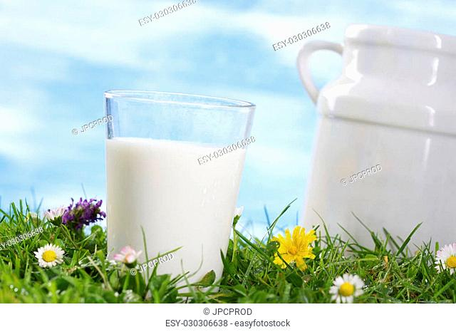Old style milk jug and glass of milk on the grass with flowers the sky with clouds on the background