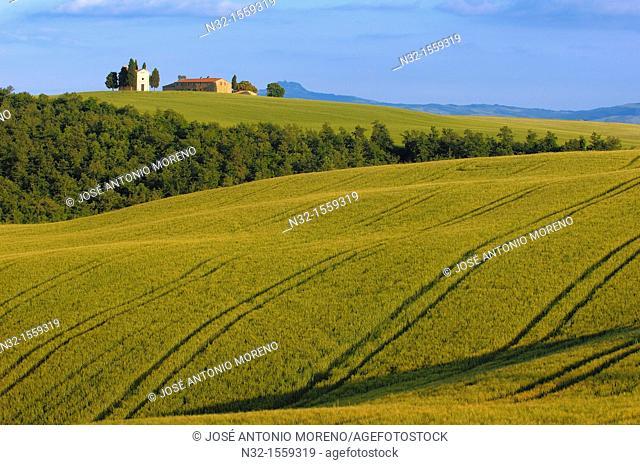 Chapel of the Madonna di Vitaleta, Val d'Orcia UNESCO World Heritage Site, Pienza, Siena Province, Tuscany, Italy