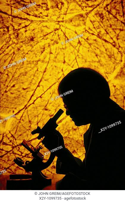 RESEARCHER LOOKING INTO A MICROSCOPE WITH NEUROLOGY SLIDE PROJECTED IN BACKGROUND