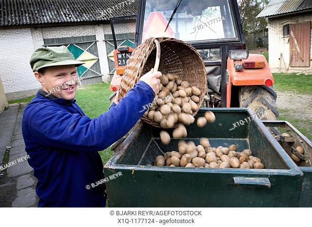 Farmer with potatoes ready for seeding.  Gmina Przylek, Zwolen county, Poland