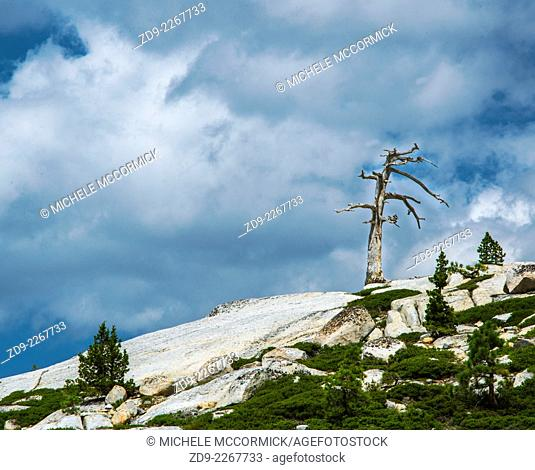 Dramatic rocky terrain in California's high Sierra