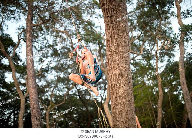 Boy swinging on rope in tree