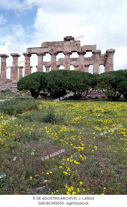 View of the Temple E or Temple of Hera, 460-450 BC, Doric order, ancient city of Selinunte, Sicily, Italy. Greek civilisation, Magna Graecia, 5th century BC