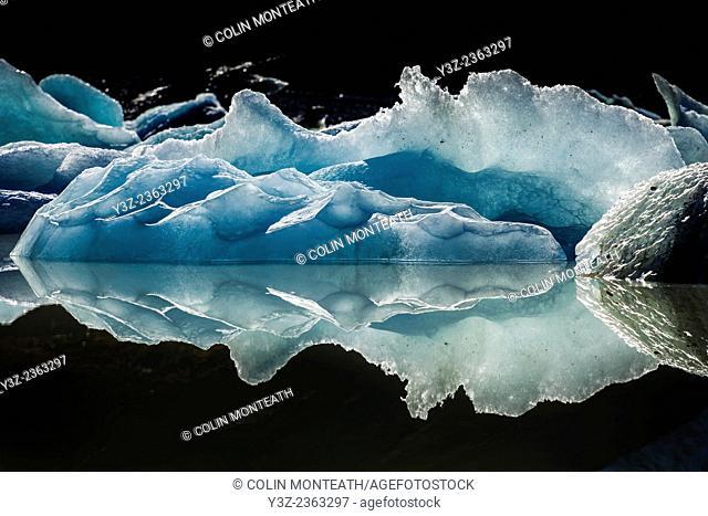 Iceberg reflection, Hooker glacier lake, Aoraki / Mount Cook National Park, New Zealand