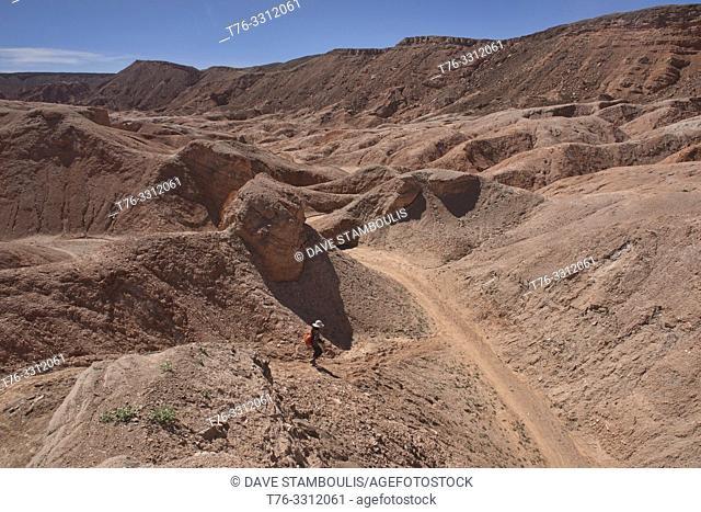 Trekking through amazing desert landscape in the Valle Marte, San Pedro de Atacama, Chile
