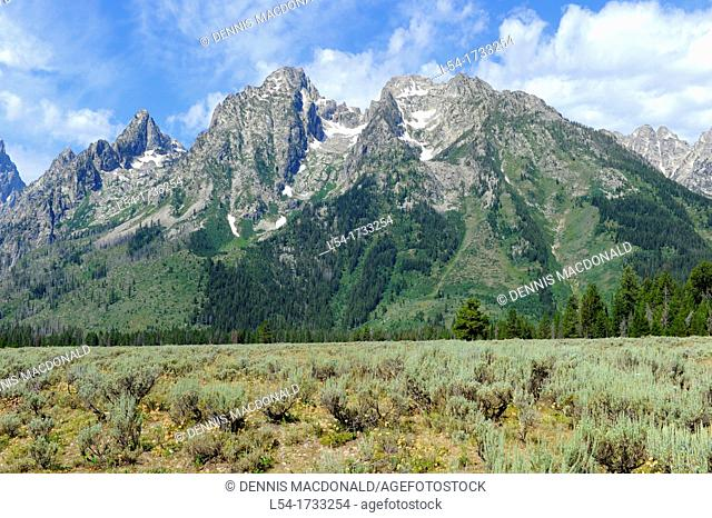 Cathedral Group Grand Teton National Park Wyoming WY United States