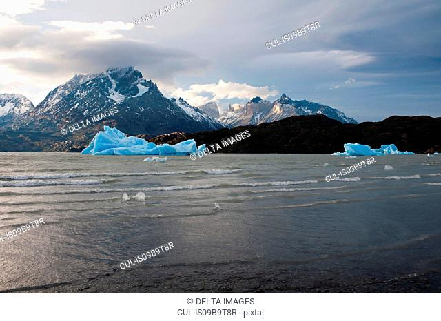 Icebergs on Grey Lake, Torres del Paine National Park, Patagonia, Chile
