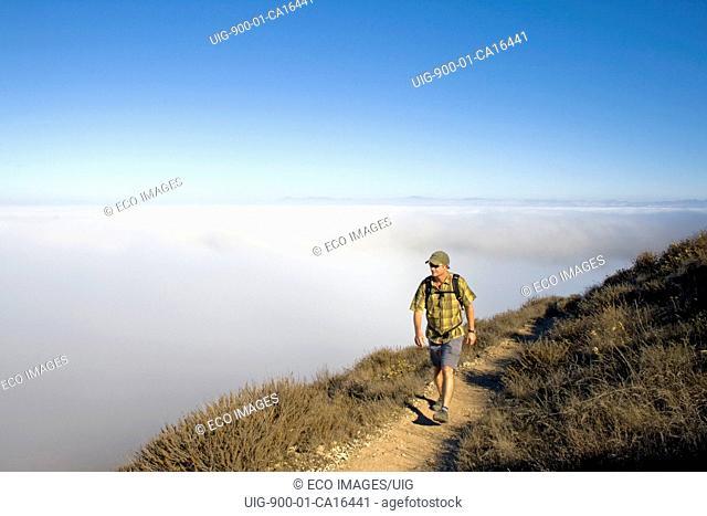 Hiker, Montaña de Oro State Park, San Luis Obispo County, California, USA
