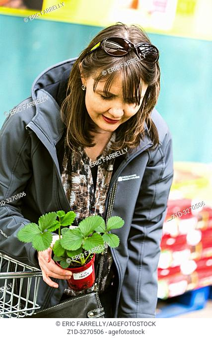 Woman choosing strawberry plants from garden Centre UK
