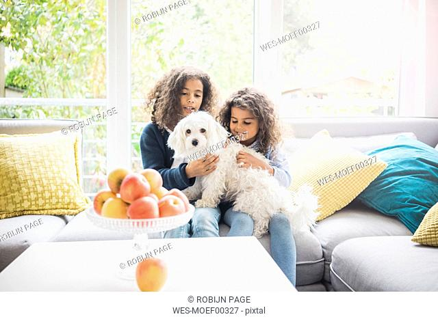Sisters sitting on couch, petting little whit dog