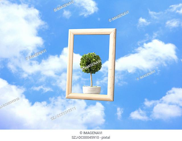 Frame and potted plant floating in blue sky