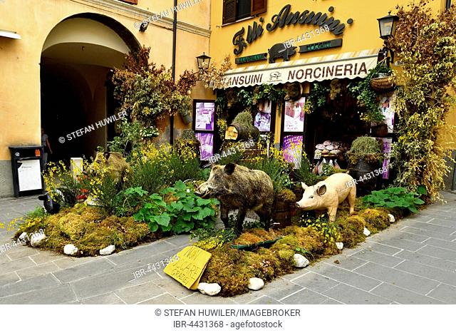 Decorated specialties, butcher with wild boar products, Norcia, Perugia, Umbria, Italy