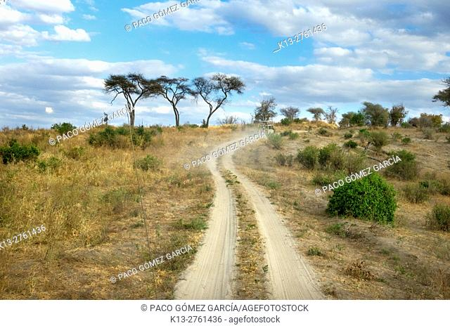 Jeeps travelling along dirt track, Ngorogoro Crater National Park, Tanzania