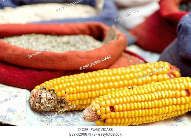 Dried corn cobs in a market