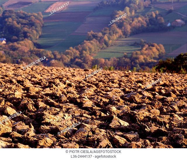 Traditional farming, Beskid Niski mountains, Poland