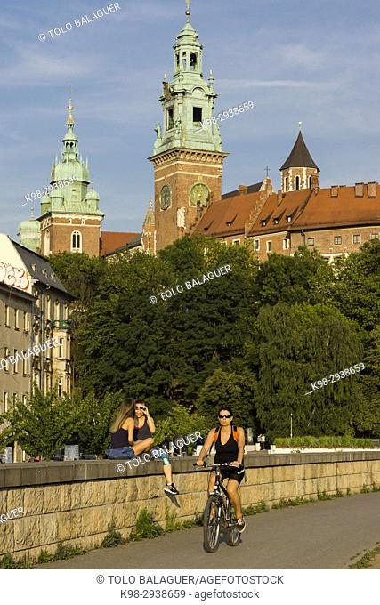 castillo y colina de Wawel, Cracovia, voivodato de Pequeña Polonia,Polonia, eastern europe