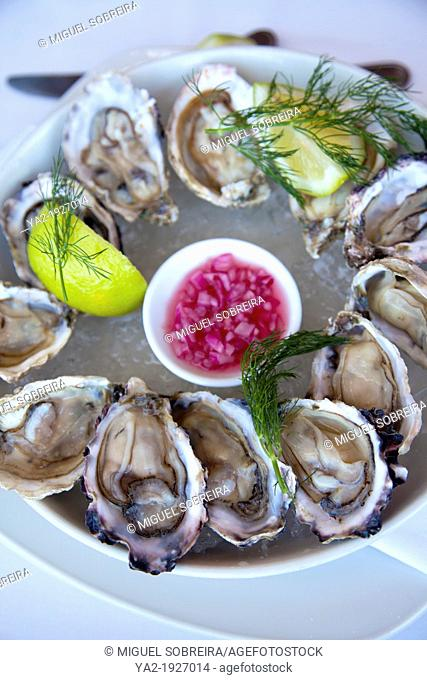 Cape Cuisine of a Dozen Oysters- South Africa