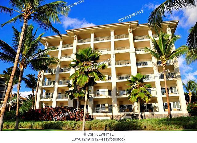 Palm trees and condos, Maui