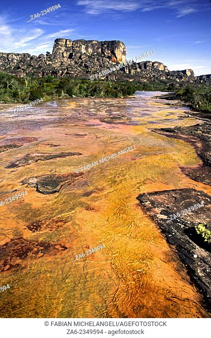 Tea-colored waters and algae stain stream bed on the Auyantepuy summit. Canaima National Park, Bolivar State. Venezuela