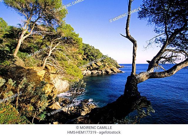 France, Var, Le Rayol Canadel sur Mer, Domaine du Rayol, Jardin des Mediterranees, Conservatoire du Littoral Estate, compulsory mention