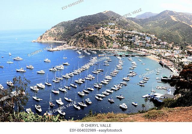Avalon Harbor - Catalina Island