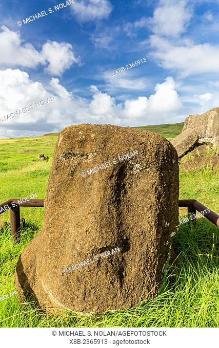 Protected moai head at the archaeological site at Ahu Vinapu on Easter Island, Isla de Pascua, Rapa Nui, Chile