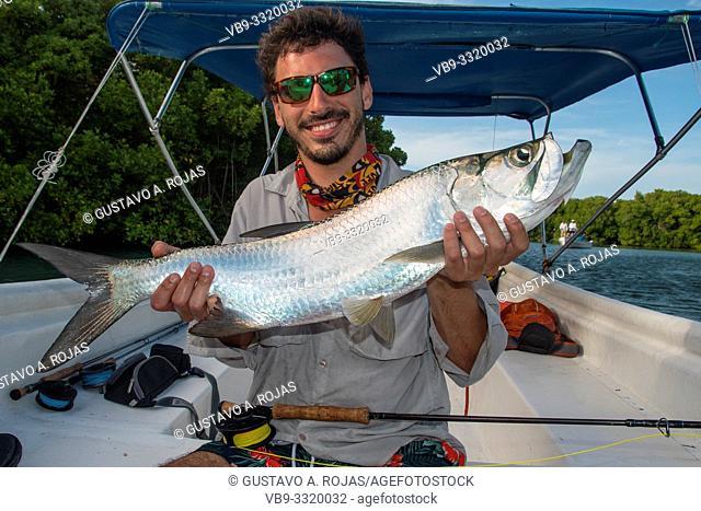 A fly fisherman holding tarponfish . los roques Venezuela