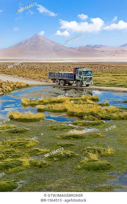 Laguna Colorada, Red Lagoon, Altiplano shallow salt lake, Potosi, Bolivia, South America