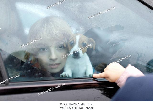 Portrait of boy and Jack Russel Terrier puppy looking out of car window