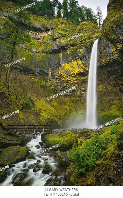 USA, Oregon, Multnomah County, Elowah Falls